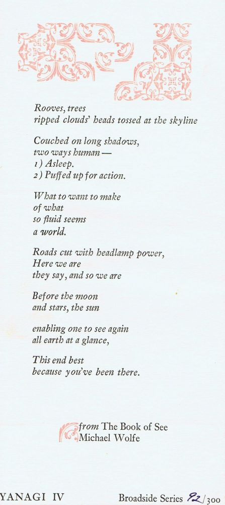 "Broadside (from ""The Book of See""). Michael Wolfe."
